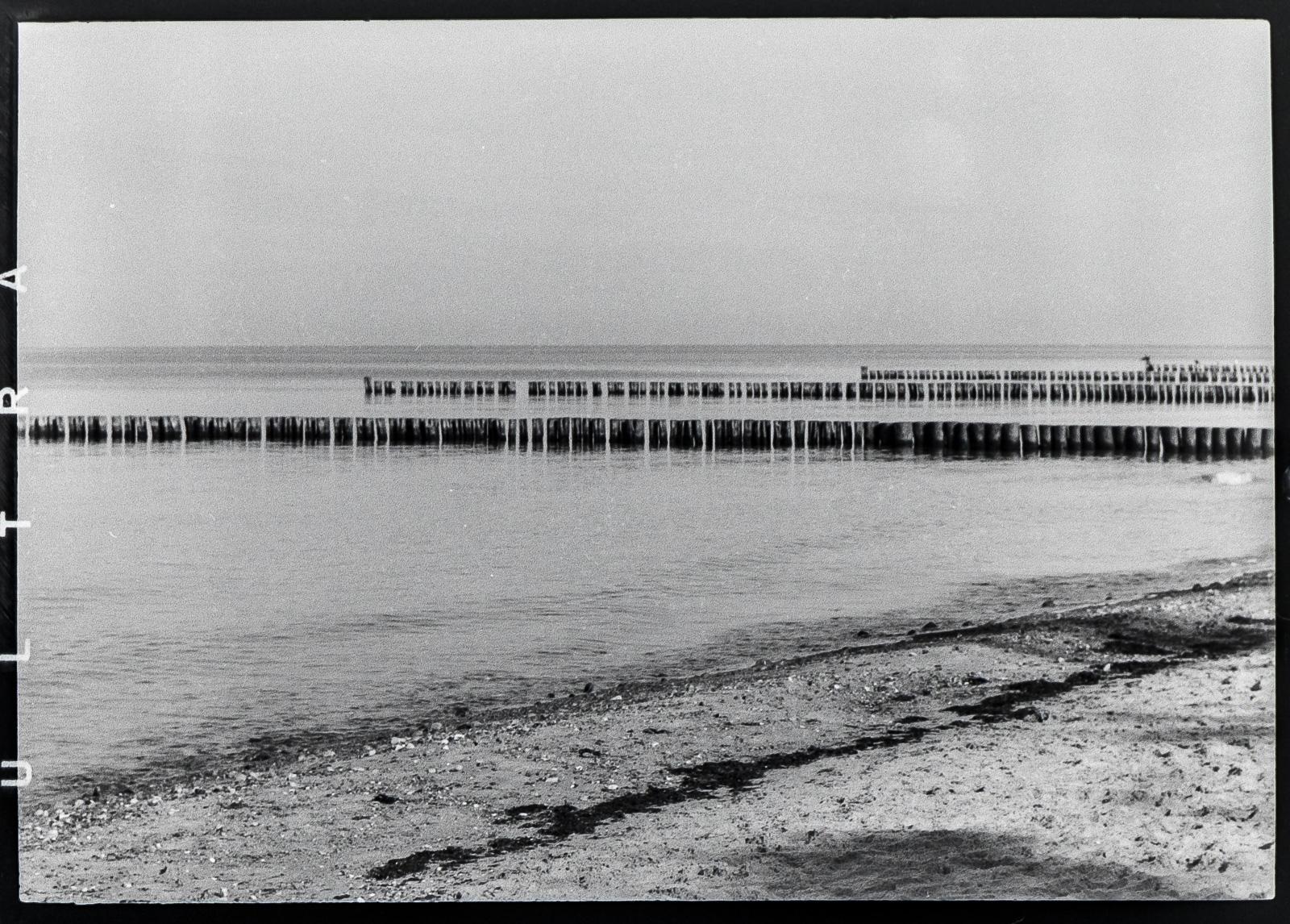 Fischland, Strand, Buhnenreihen
