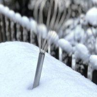 Schneebesen im Schnee