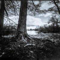 Lochkamera-Aufnahme Teich bei Linau