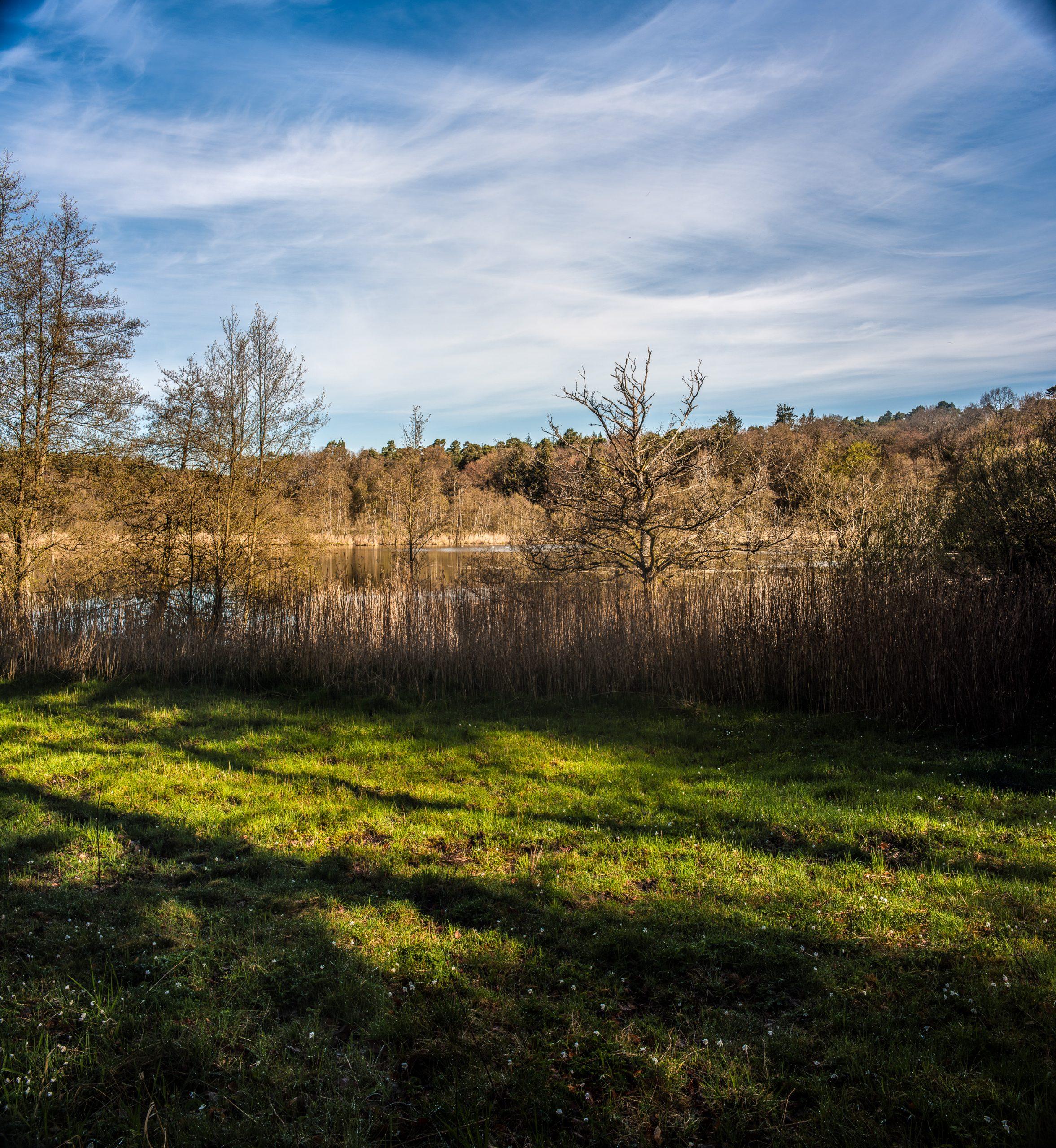 Der Lottsee liegt etwas abseits vom Weg und mit geschütztem Ufer, Vögel wissen das zu schätzen.