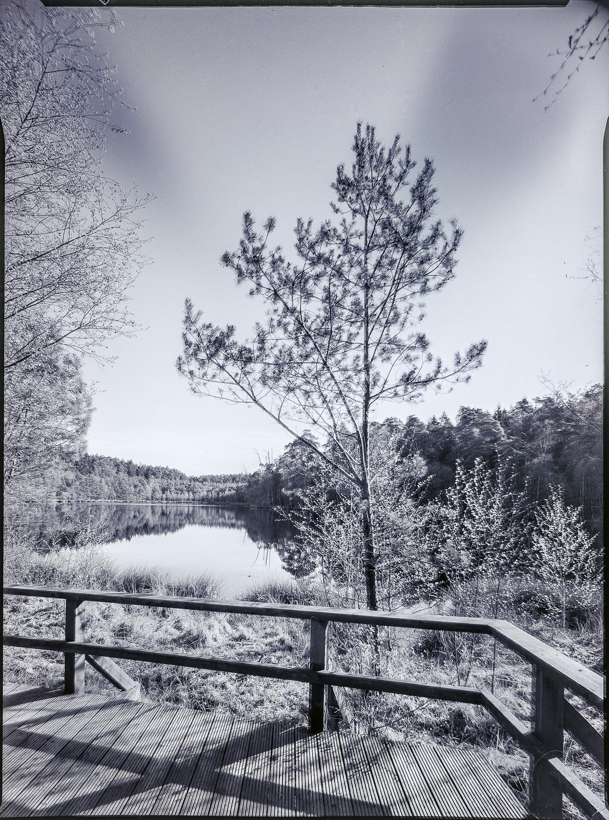 Schwarzsee im Hellbachtal, SW-Plattenkameraaufnahme