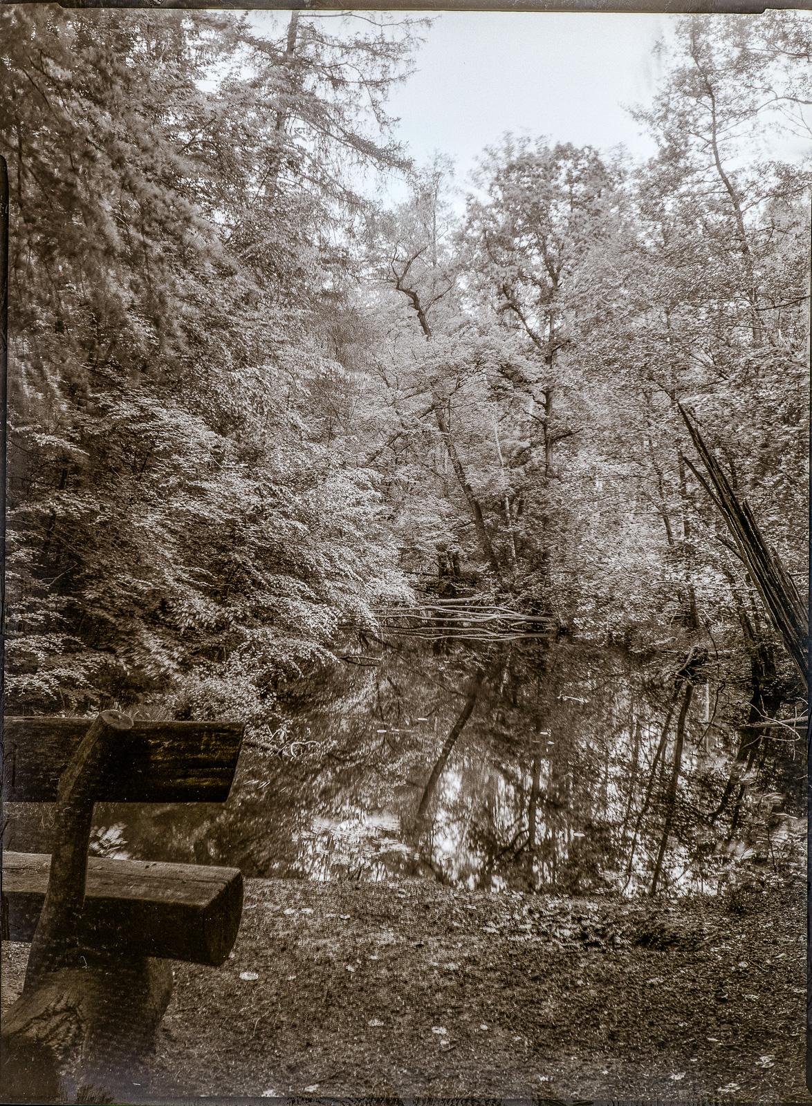Wohldorfer Wald, Schleife der Ammersbek