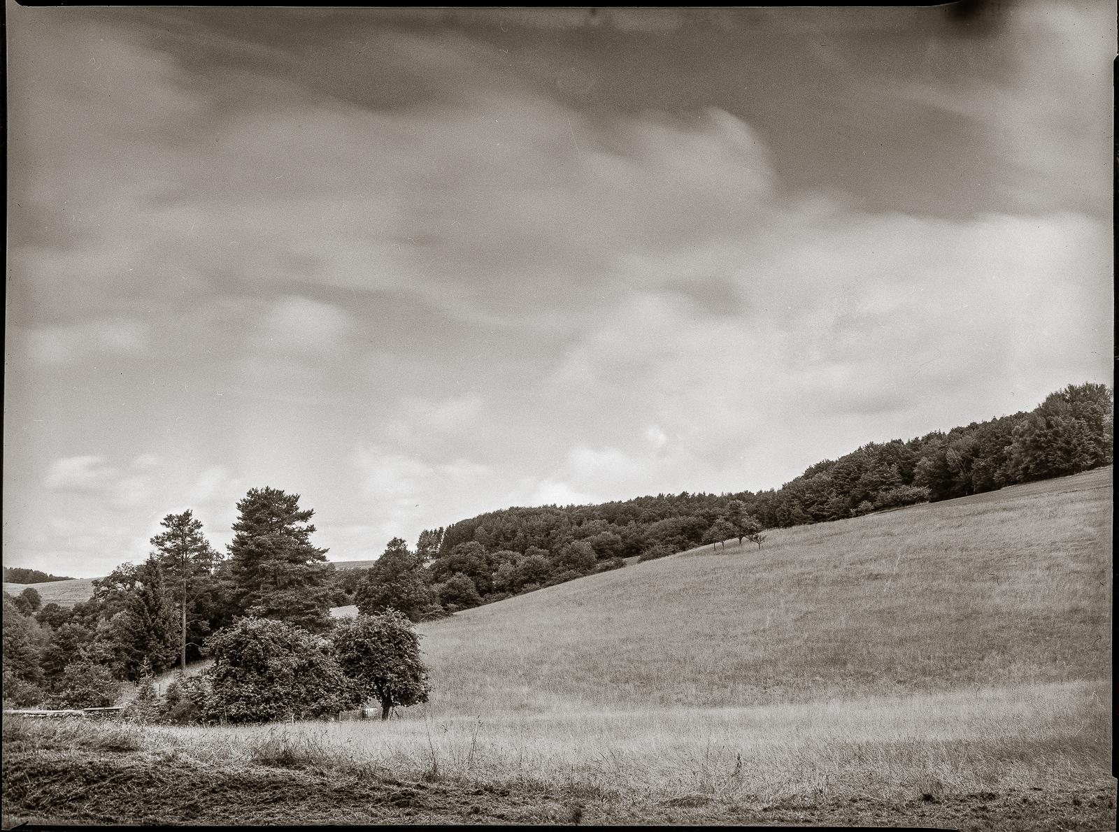 Bergwiese mit ziehenden Wolken