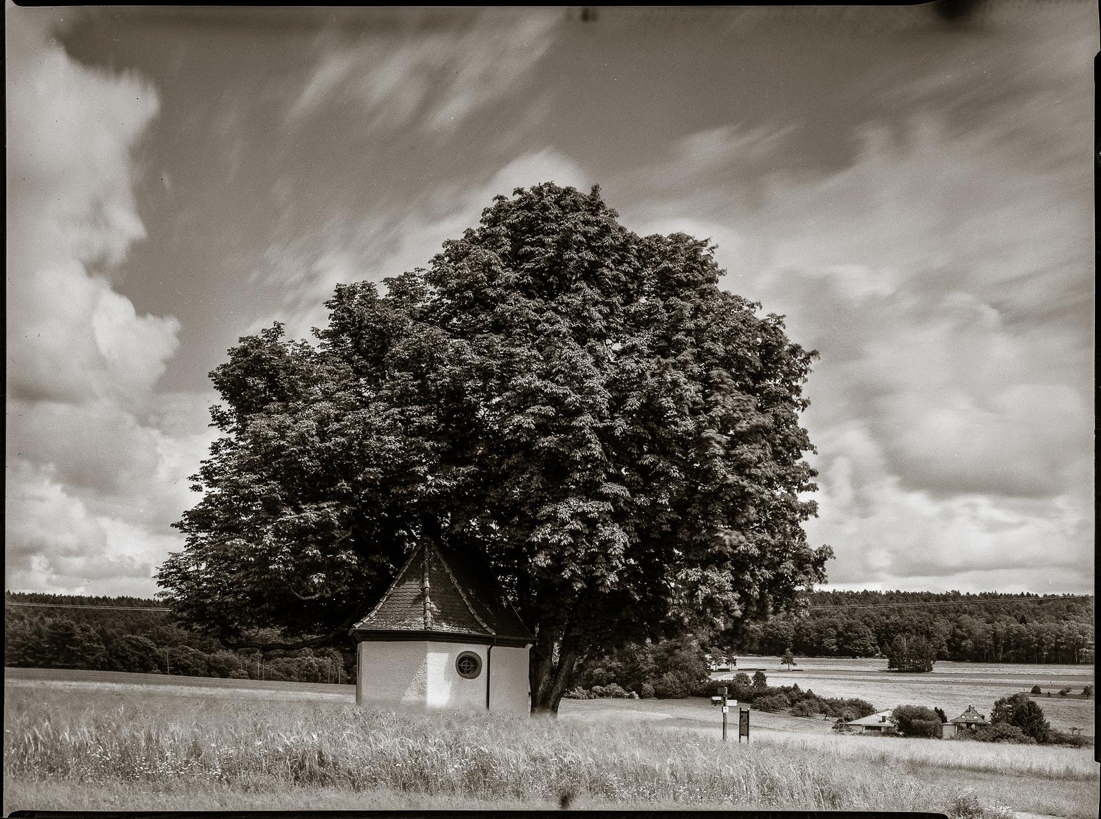 Kapelle unter Bäumen, engerer Ausschnitt