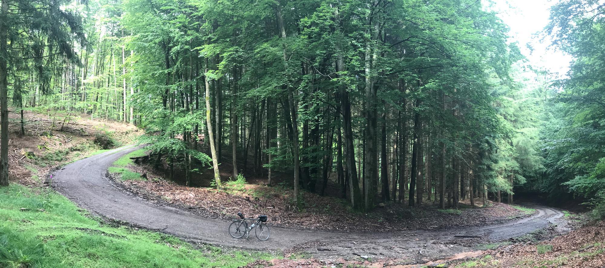 Haarnadelkurve mit Fahrrad im Wald, Panorama aus vier Handy-Fotos