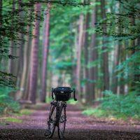 Fahrrad frontal aud einem dunklen Waldweg