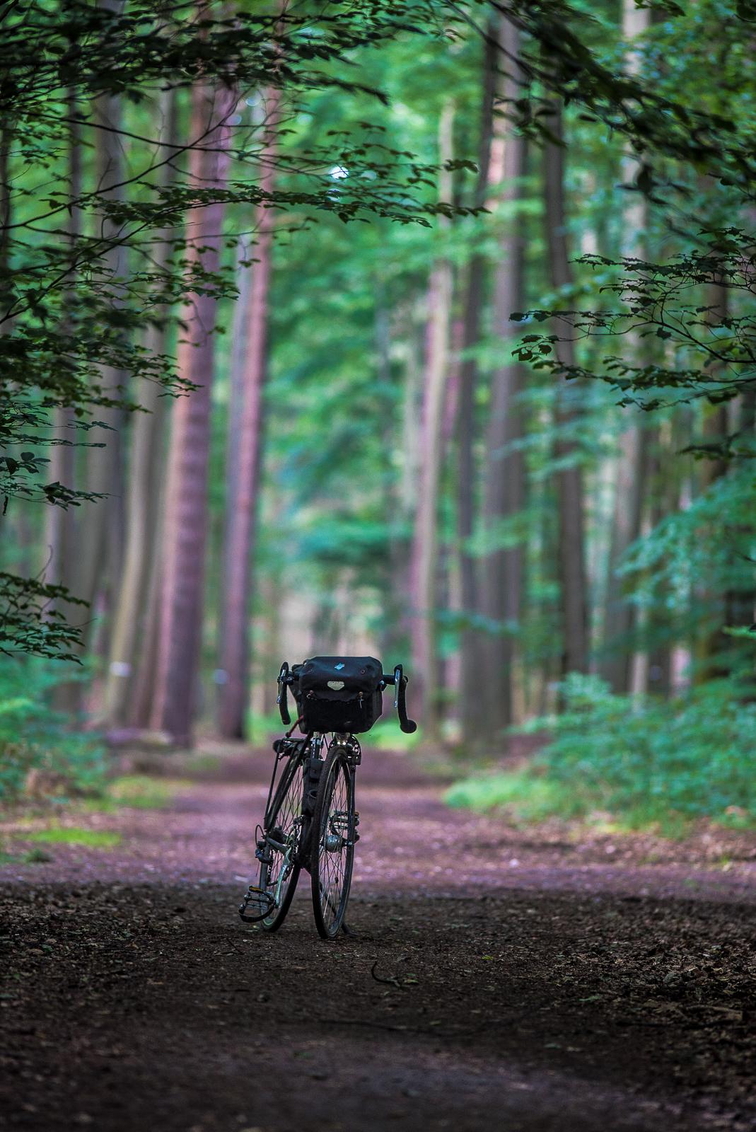 Fahrrad frontal auf einem dunklen Waldweg