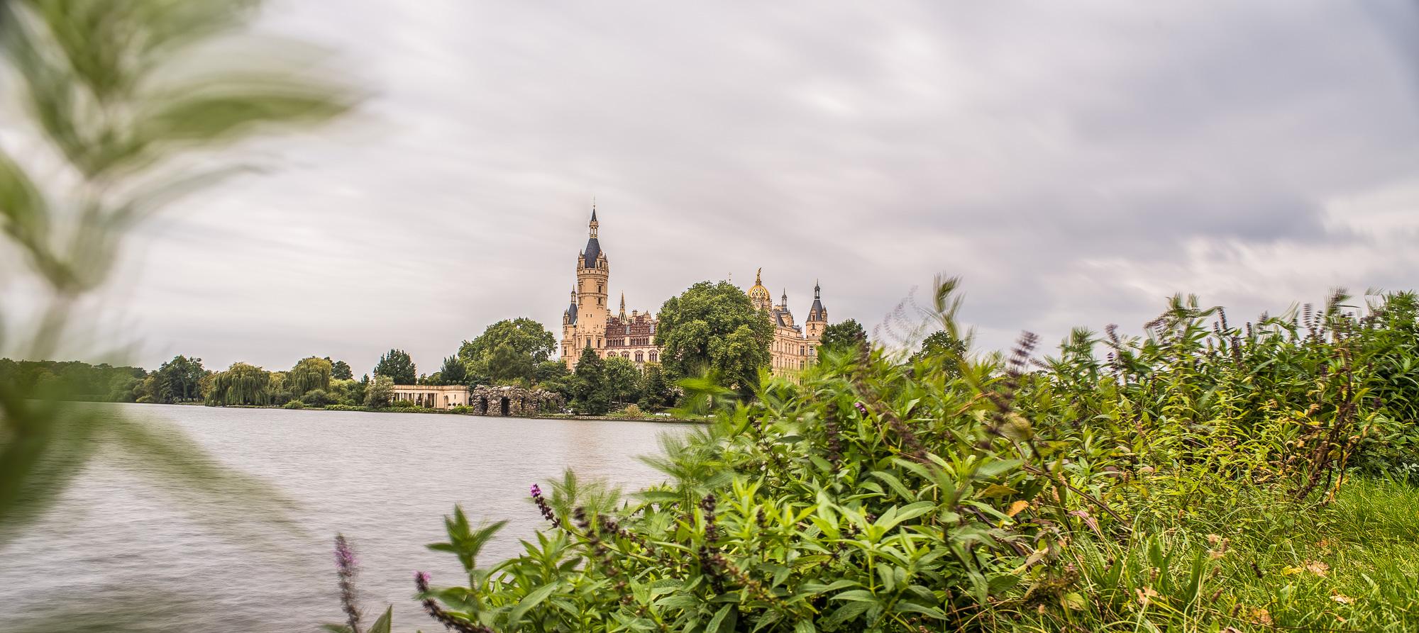 Schlosspanorama mit windbewegten Pflanzen